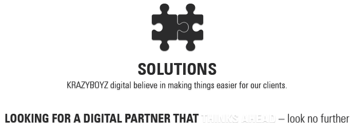 KRAZYBOYZ solutions - looking for a digital partner that thinks ahead - look no further